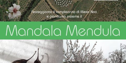 Our Garden Mandala Mendula
